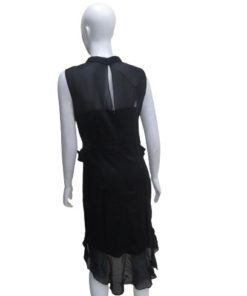 Women's Sleeveless Ruffled Waist and Upper Part See-through Dress