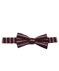 Men's Striped Bow ties