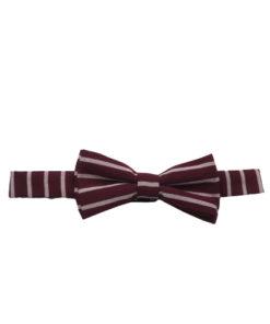 Men's Striped Bow ties