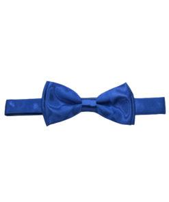 Plain Shiny Bow ties