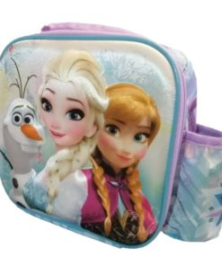 lunch bag-frozen