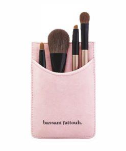 brushes kit large